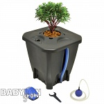 Nutripot DWC System For One Plant