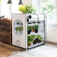 Homebox Ambient R Growtent
