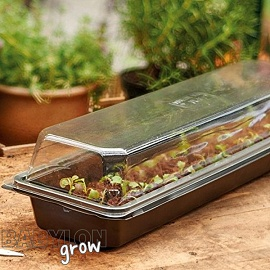 Propagator Windowsill