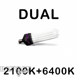 Advanced Star PRO STAR DUAL 2100K+6400K CFL izzó